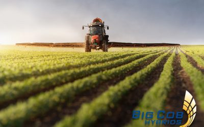 tractor spraying soybean seed for sale