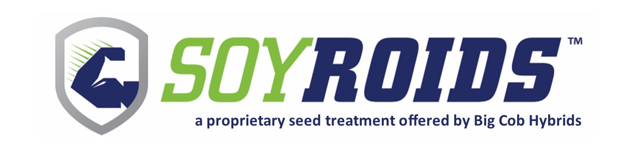 soyroids-logo-horizonal_proprietary to BCH