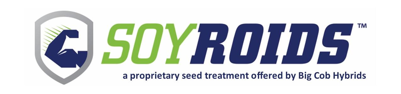 soyroids-logo-horizonal_proprietary to BCH